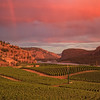 Blue Mountain Summer Sunset 2015