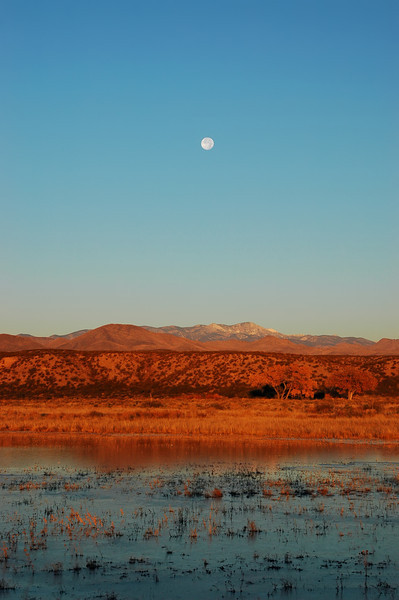 A Hunter's Full Moon Sunrise