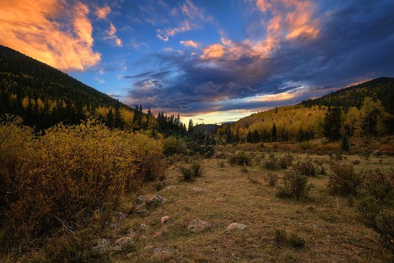 Found Meadow Evening Twilight Sendoff