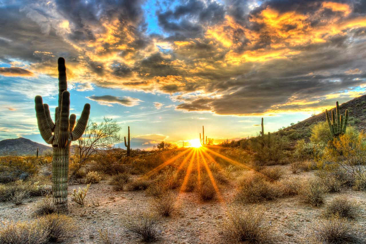 Arizona Sonoran Desert sunset.