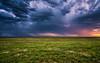 Spring Dreams of the Central Shortgrass Prairie