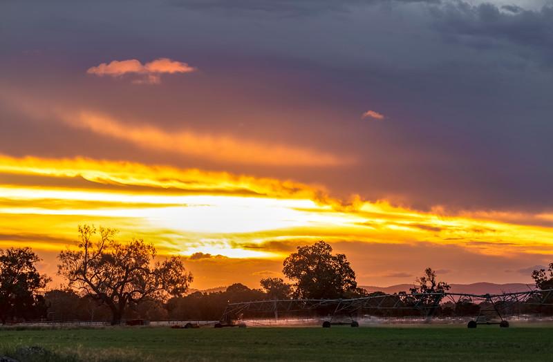 Sunset over the hay fields - Rockhampton 07-03-2019