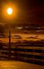 081214_Seal Beach_052