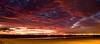 081214_Seal Beach_024