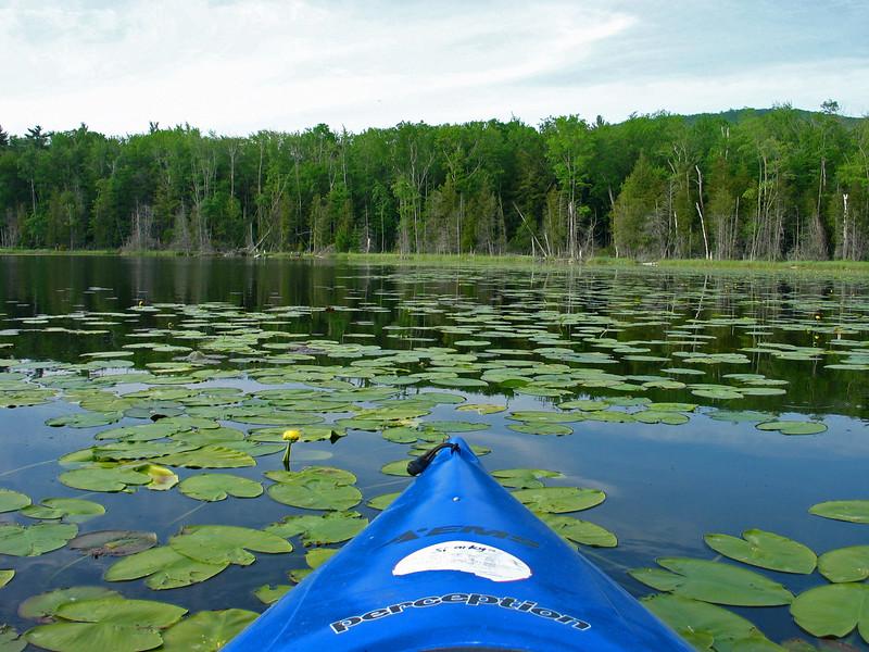 Kayaking on Tucker Lake