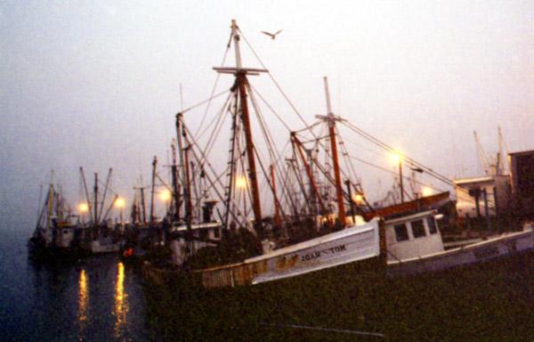 Foggy Morning #2  McMillan Wharf<br /> Provincetown MA