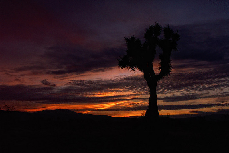 Station Fire Sunset<br /> Littlerock CA