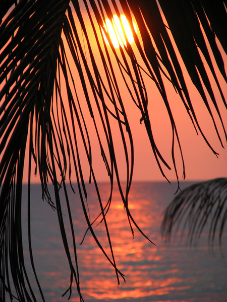 Sunset 4 jpg