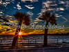 sunset-long beach-print-_5437