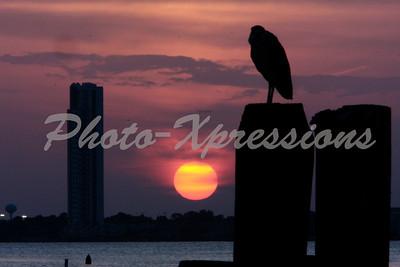 Sunset silhouette taken at Kemah, TX