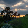 Evening descends over Stafford
