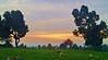 From Inglewood Memorial Park