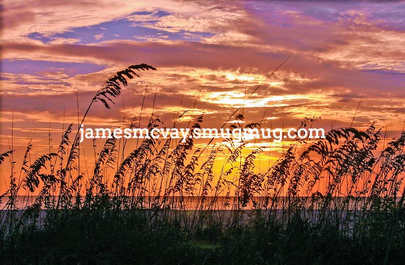 Beach Dunes Sunset