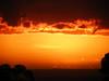 Whittier Hills Sunset - 11