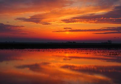 Sunset on the California Delta