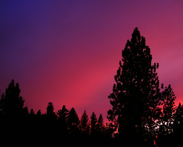 Sunset in the Sierra Foothills