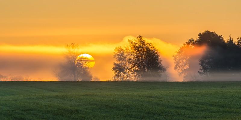 Early Dog Sunrise