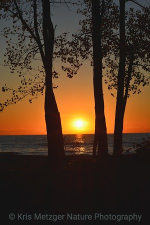 Lake Erie Sunset I