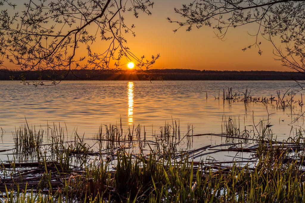 Grand River Sunrise