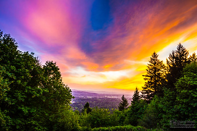 Council Crest Sunset, Portland, Oregon