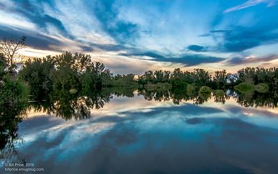 Lakes Regional Park, Fort Myers, Fl