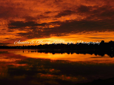 """Sky on Fire"" Lake Montebello, Baltimore MD"