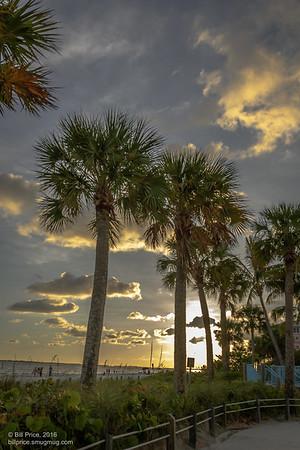 Sun Set in palm trees on beach