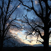Blue Sunset with silhouette trees on either side of Bald Knob Cross.