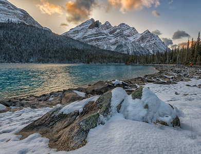Peyto Lake Shoreline