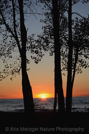 Lake Erie Sunset II