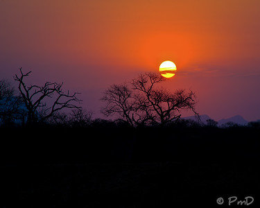 Sunset on the Kapama game reserve in the Kruger region of South Africa