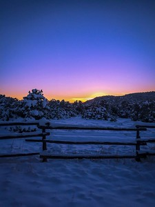 Blue Hour in Winter
