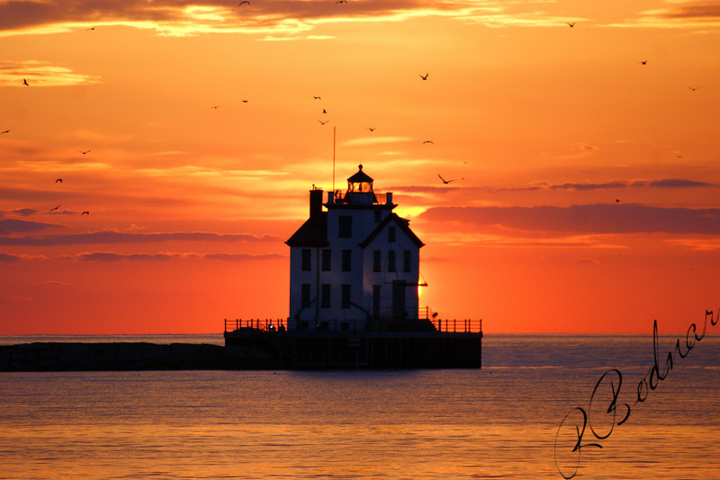Photo By Robert Bodnar.....................................Lorain Harbor with Birds and Sun