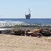 2011-02-11_Bolsa Inlet Offshore_7728.JPG