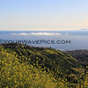 2017-04-17_Laguna_Top Of The World_7.JPG<br /> <br /> And the fog was rolling in...