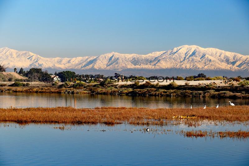 2019-12-27_Bolsa Wetlands Snow Views_4.JPG