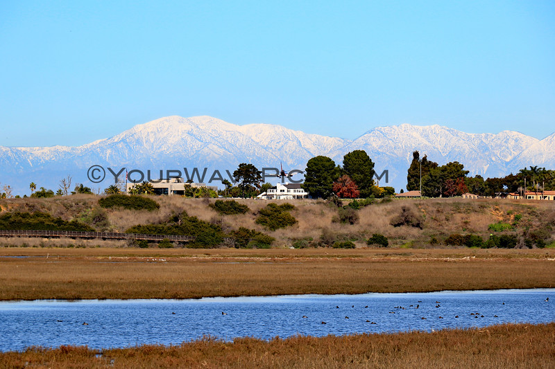 2019-12-31_Back Bay Snow View_5.JPG