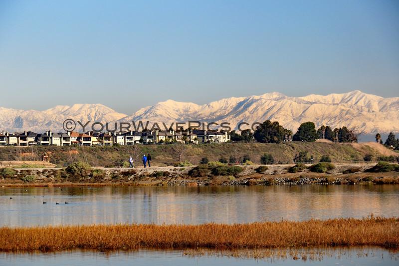 2019-12-27_Bolsa Wetlands Snow Views_5.JPG