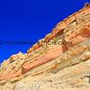 Torrey Pines_02-24-14_4523.JPG