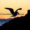 01-11-13_Little Corona Sunset_2177.JPG