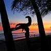 04-03-14_Casa Selvatica Sunset_5306.JPG