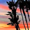 03-08-14_Laguna Sunset_4842.JPG