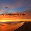 02-08-14_Magnolia Sunset_4296-8015.JPG