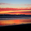 2016-01-08_Magnolia Sunset_8796.JPG