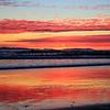 2016-01-08_Magnolia Sunset_8800.JPG