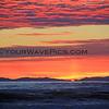 2016-01-08_Magnolia Sunset_8788.JPG