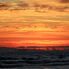2019-08-03_Bolsa Chica Sunset_9.JPG
