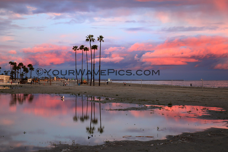 2020-04-10_Belmont Shore Sunset_9.JPG<br /> <br /> A few days of rain produced this stormy sunset, complete with reflective puddles and a rainbow!