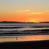 2020-01-07_Magnolia Sunset_6.JPG