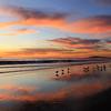 2020-01-07_Magnolia Sunset_13.JPG